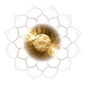 Gong-Blume_300x300